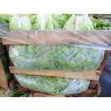 Embalagem protetor para hortifruti no Jardim Oriental