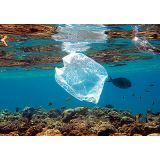 Embalagens biodegradáveis transparente na Vila da Saúde