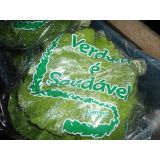 Empresa de embalagens plásticas de horta no Sítio Tapera