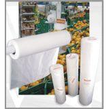 Fabricante de embalagem para hortifruti  na Cohab Educandário