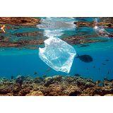 Modelo de embalagem sustentável na Vila Santista