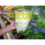 Plástico embalagem para hortaliças no Jardim das Graças