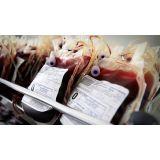 Plástico para bolsa de sangue na Vila Leme