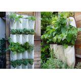 Saco plástico de muda de plantas no Jardim Virgínia Branco