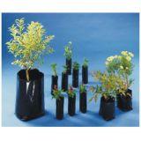 Sacos para mudas de plantas na Vila Azevedo